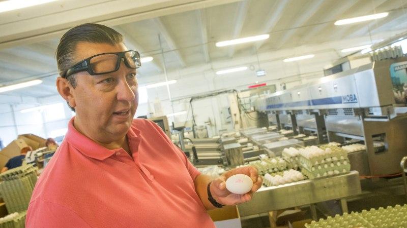 Ekspert selgitab: kust tulevad valged või pruunid munad?
