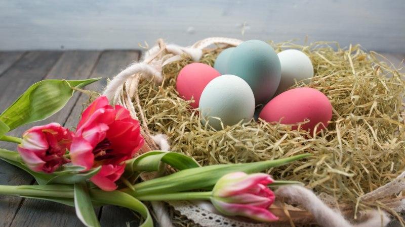 ÜLESKUTSE JA GALERII | Saada pilt oma pühademunadest!