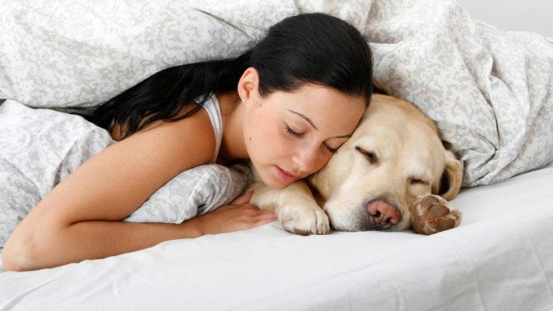 PARIM VALIK NAISELE: paar põhjust, miks koer on voodis parem kui mees
