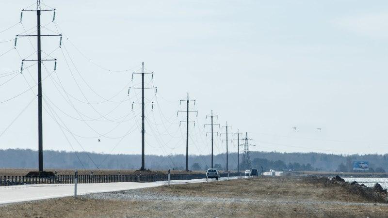 Kevadine luigesadu: Väinatammi kohal kõrguvad õhuliinid hukutavad linde