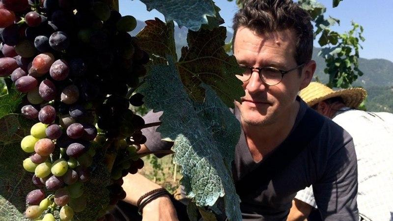 VEIN ON MEIE VERI! Kumu lõpetab filmihooaja pühendusega Gruusia veinile