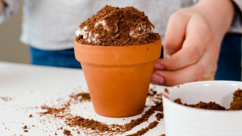 VIDEO   Koolilapse kokakool: vahva väljanägemisega koogike teeb emad kindlasti väga rõõmsaks!