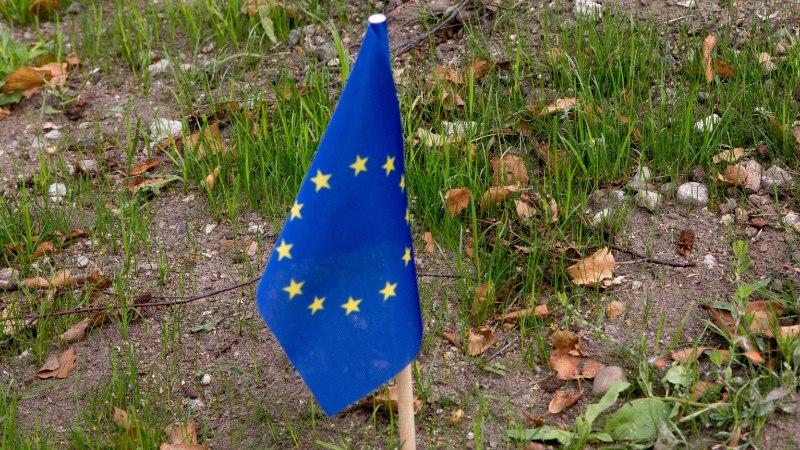 Juhtkiri | Kas kujutaksime ette elu väljaspool ELi?