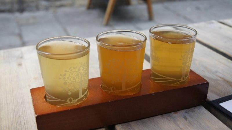 NAISTELEHT TESTIB   Kui siidrimaitse meeldib, siis kas asja ajab ära ka alkoholivaba õunasiider?