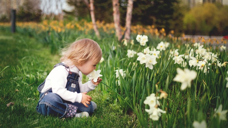 Kas tahaksid suvel vabamalt võtta? Siin on 7 nippi, mis sulle aiatöödest puhkust annavad