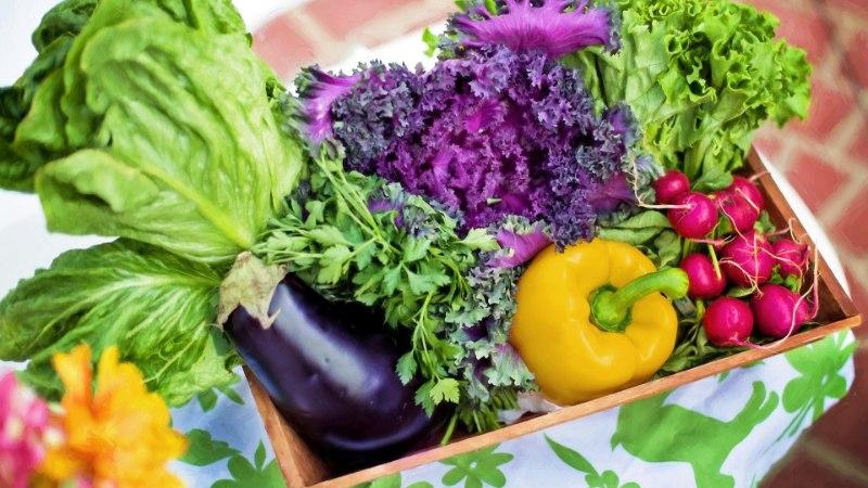 SUTSU SOODSAM POESKÄIK: 7 praktilist ja lihtsat nõuannet, kuidas toidukulusid kokku hoida